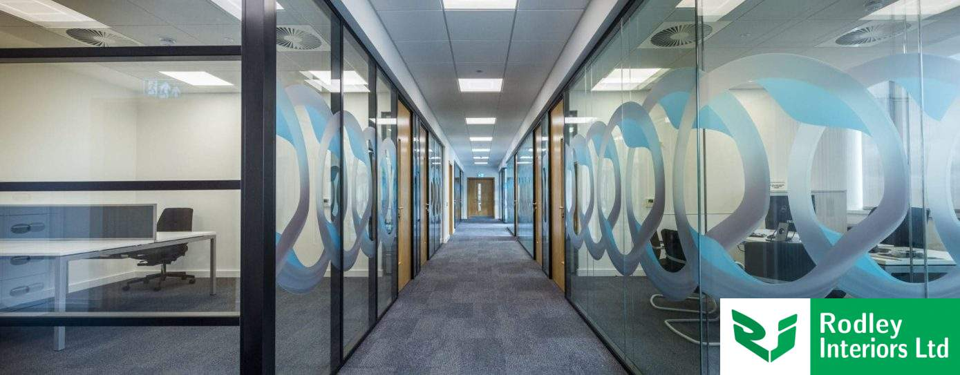 Ocula partitioning system revealed