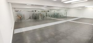 Case Study: Frameless Glass Partitioning for Leisure area