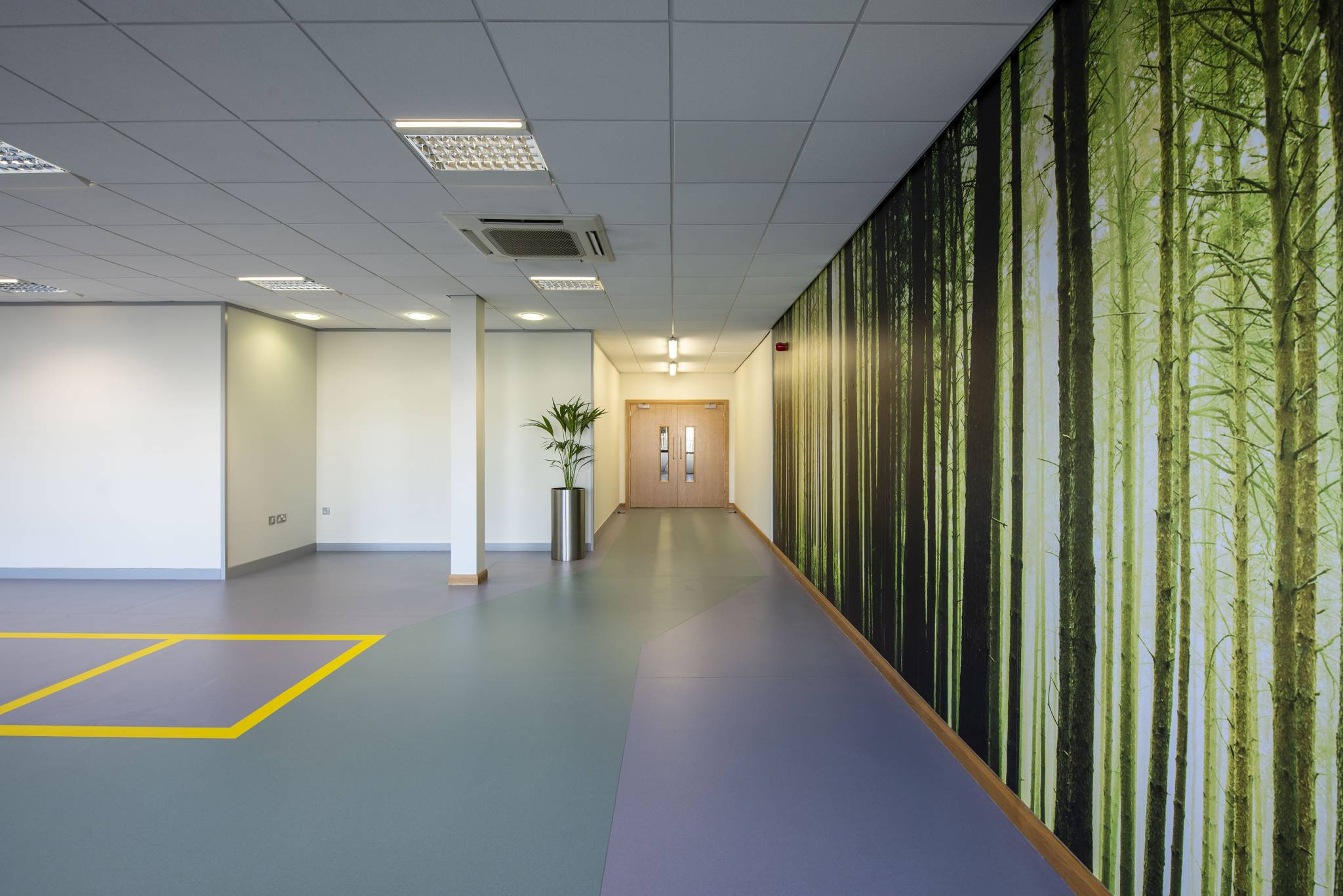 Office feature walls