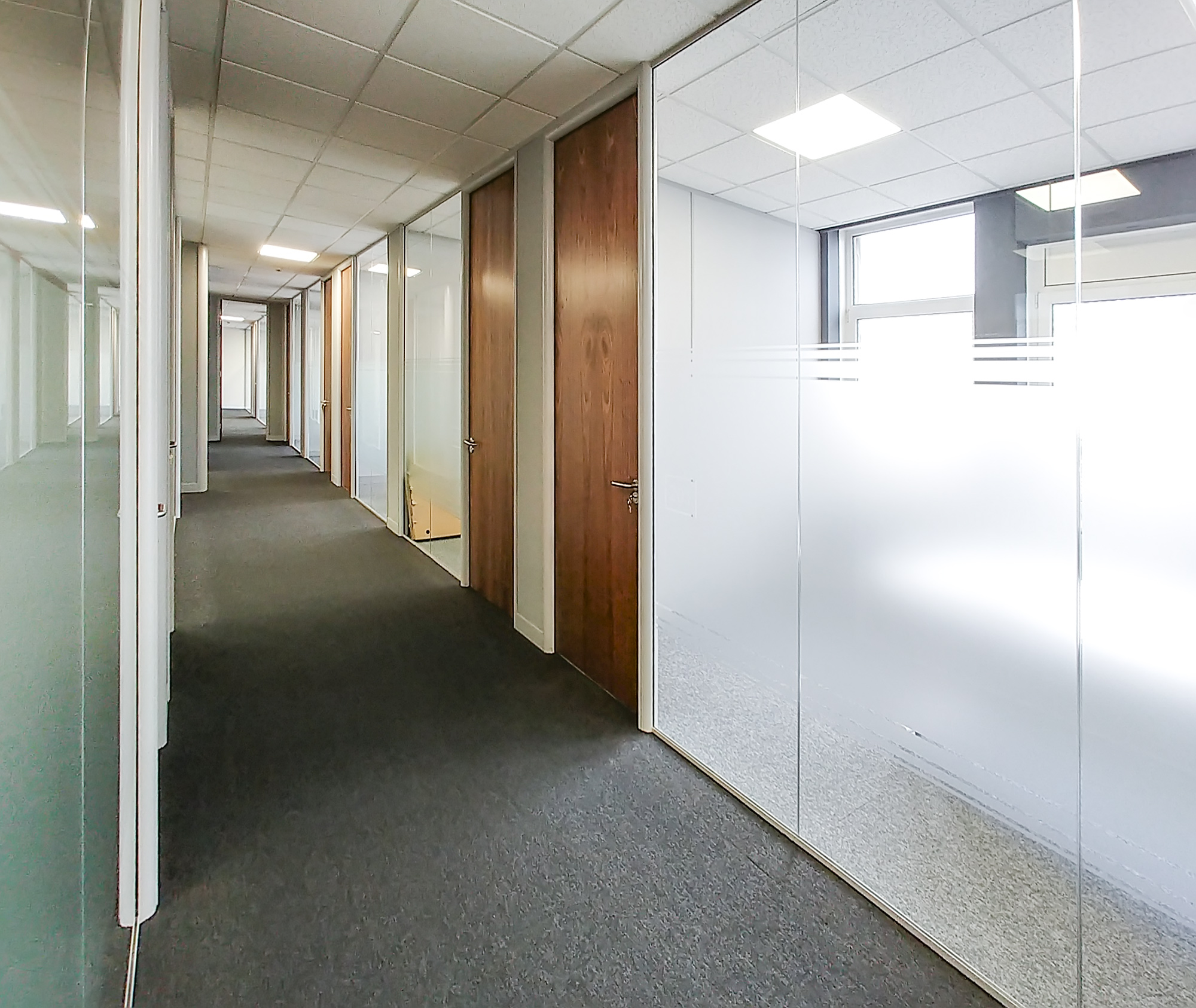 Glass Partitioning Systems